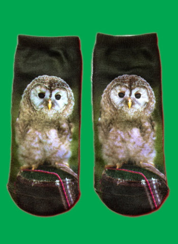 Photo print owl socks