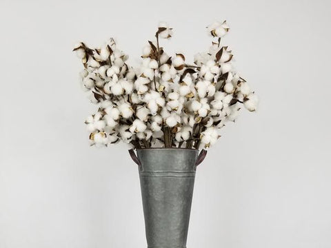 faux cotton stem