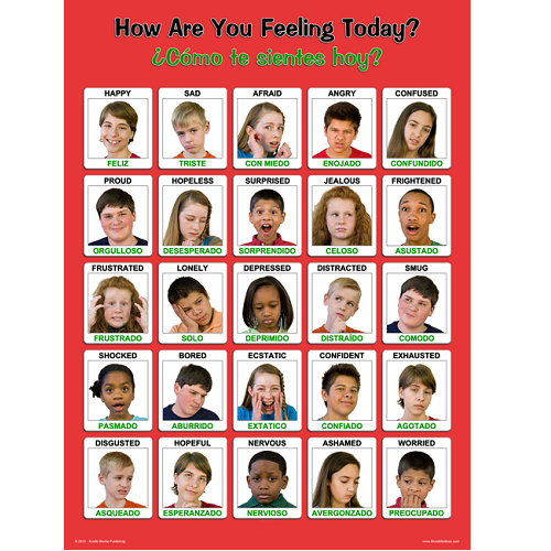 Laminated Spanish / English Youth Feelings Poster 18 x 24 inches