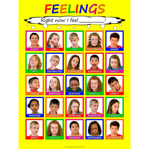 Laminated Child Feelings Poster 18 x 24 inches