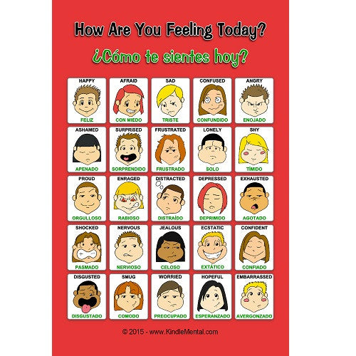 Mini Bilingual Feelings Poster, with Graphics - Set of 12
