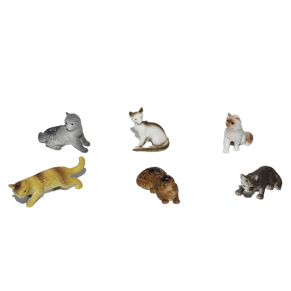 Kittens & Cats (set of 6)