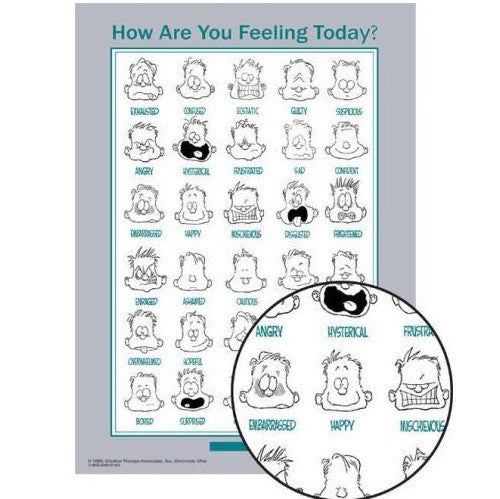 Mini Feelings Poster - English Laminated