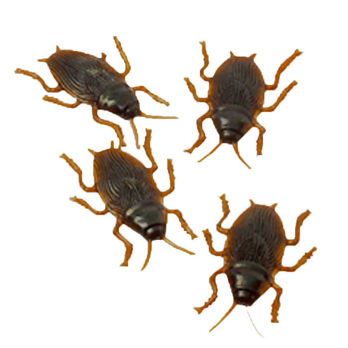 Cockroaches (set of 2)