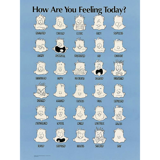 Feelings Poster - English Laminated