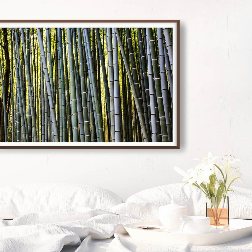 Fine art photographic print by Jonathan and Angela Scott, depicting a beautiful bamboo maze in Japan.