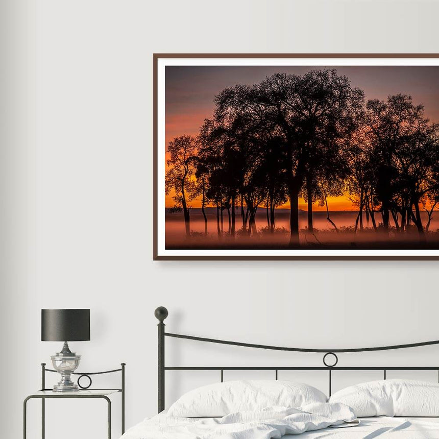 Fine art photographic print by Jonathan and Angela Scott, depicting the silhouette of trees at dawn in Maasai Mara, Kenya.