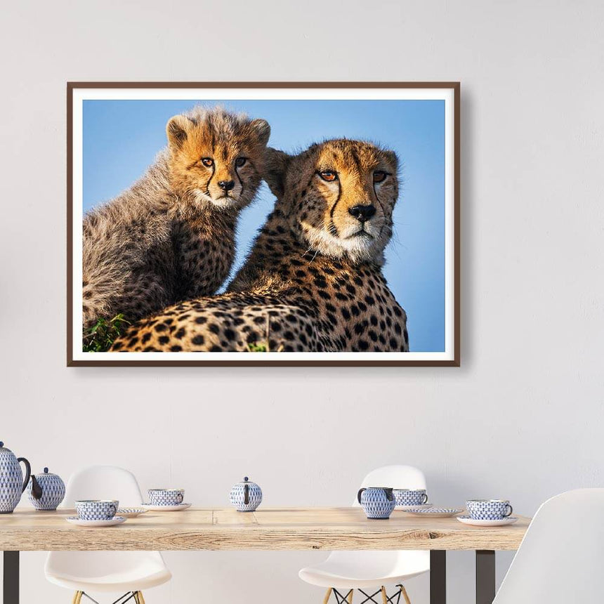 Fine art photographic print by Jonathan and Angela Scott, depicting Shakira the cheetah and cub Duma in Maasai Mara, Kenya.