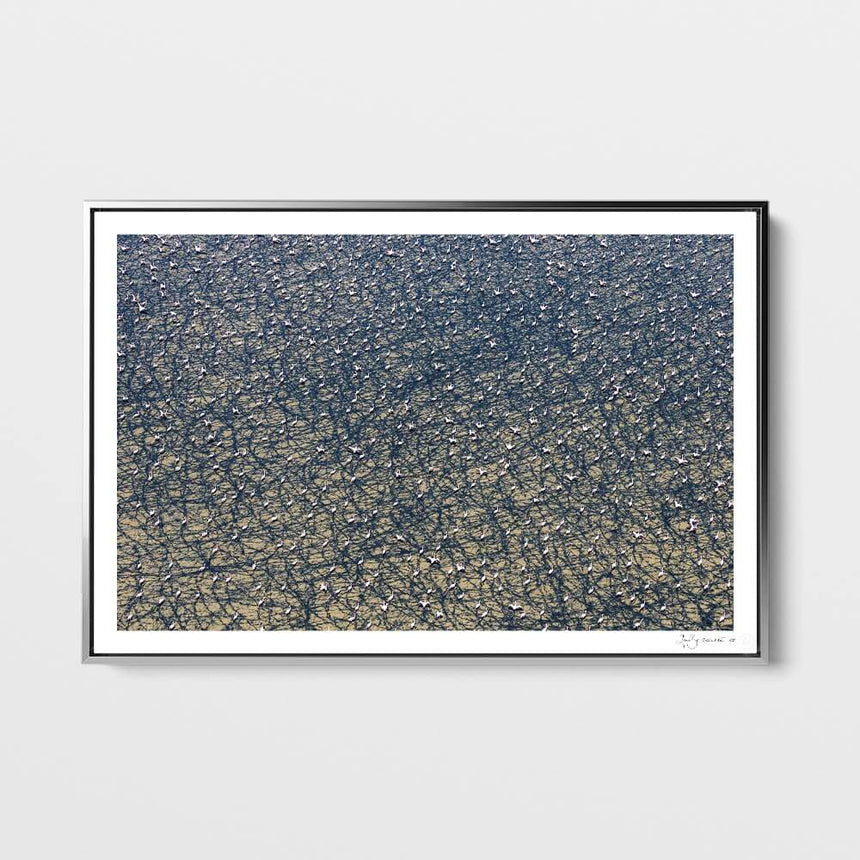 Limited edition photographic print by Jonathan and Angela Scott, depicting an aerial view of the magical Lake Logipi in Kenya.
