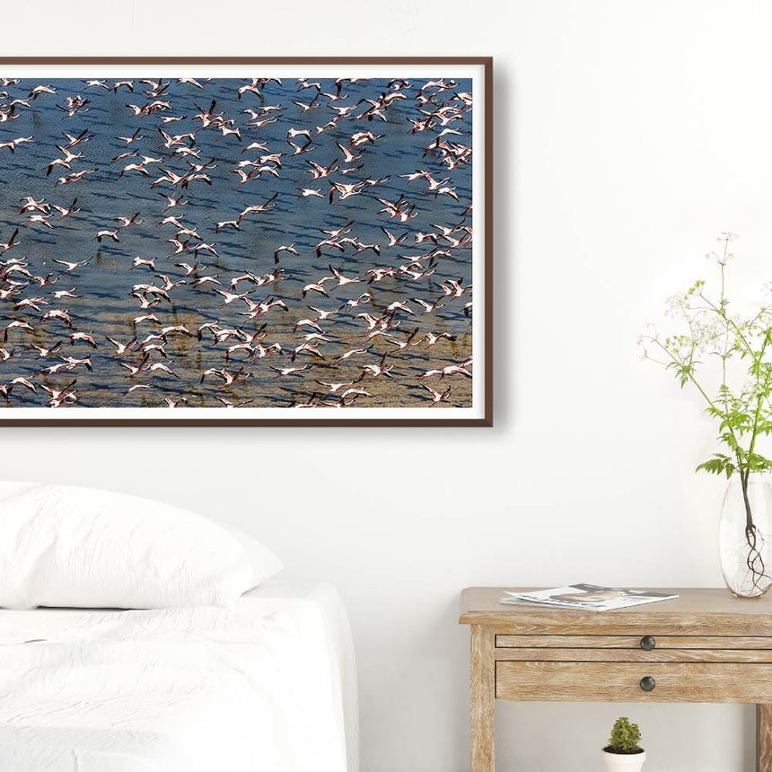 Fine art photographic print by Jonathan and Angela Scott, depicting flamingos flying over Lake Logipi in Kenya.