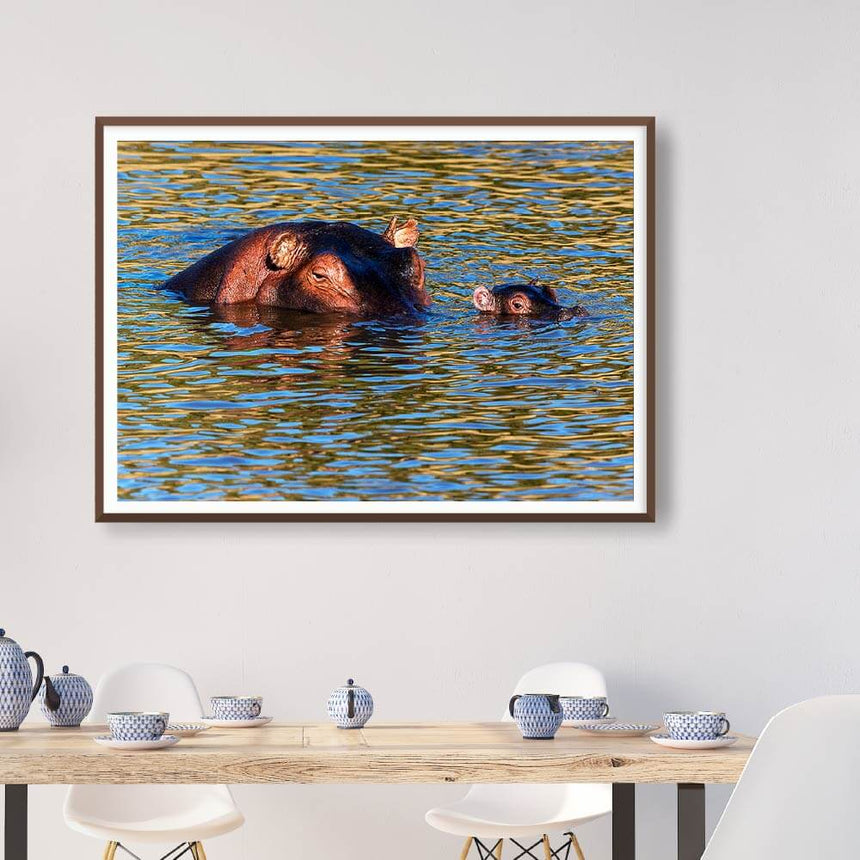 Fine art photographic print by Jonathan and Angela Scott, depicting a mother hippo and her baby swimming in Maasai Mara, Kenya.