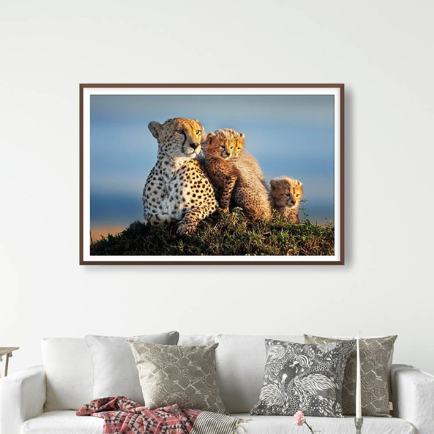 Fine art photographic print by Jonathan and Angela Scott, depicting Shakira cuddling her cheetah cubs in Maasai Mara, Kenya.