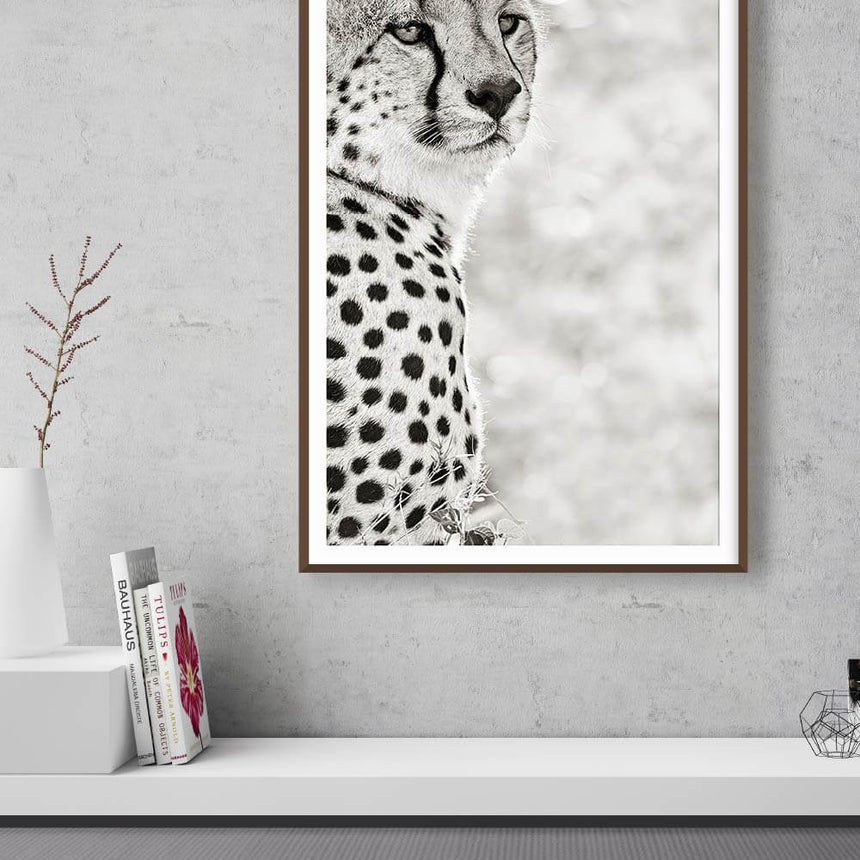 Fine art photographic print by Jonathan and Angela Scott, depicting the portrait of a cheetah in Maasai Mara, Kenya.