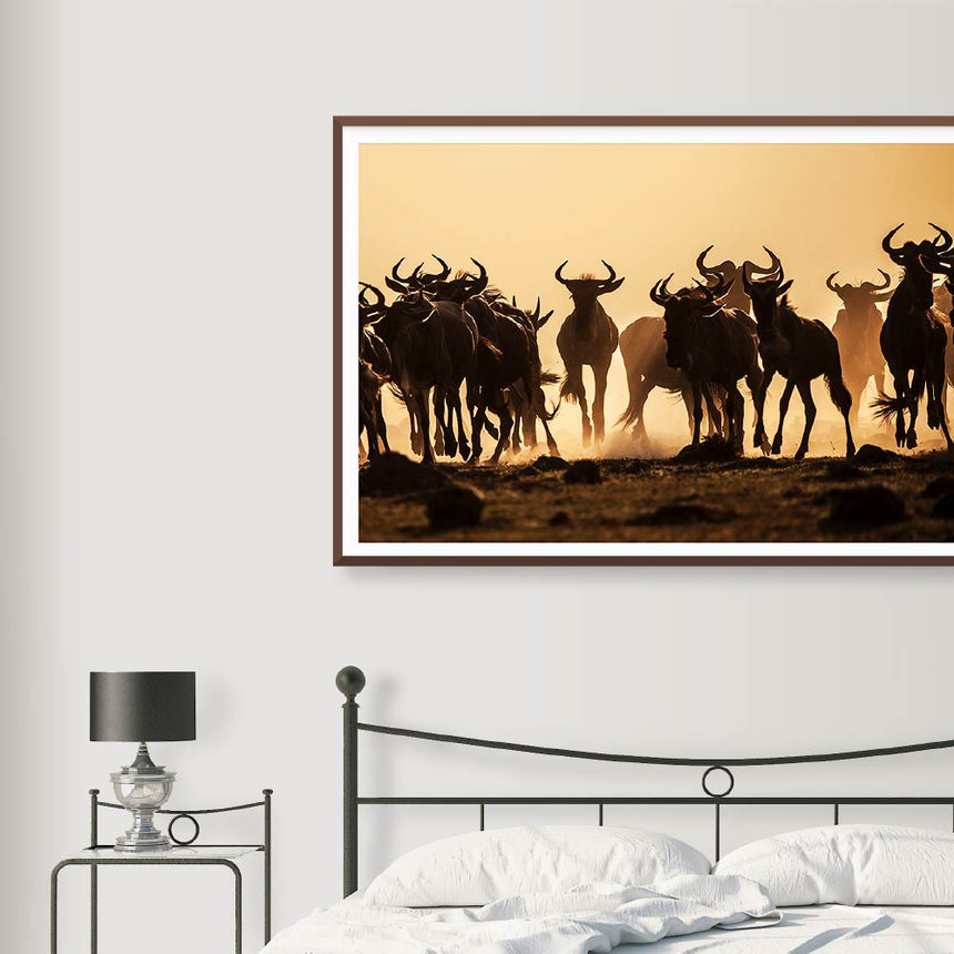 Fine art photographic print by Jonathan and Angela Scott, depicting a herd of galloping wildebeest in Maasai Mara, Kenya.