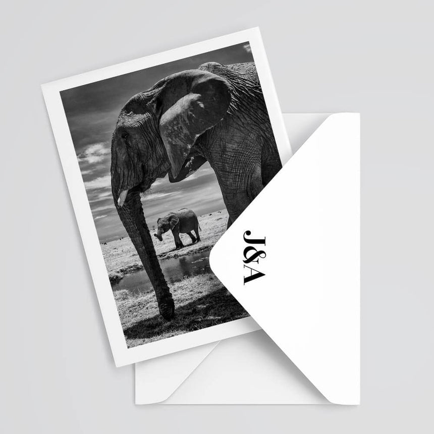 Fine art photography greeting card by Jonathan & Angela Scott, depicting 2 elephants at a salt lick in Maasai Mara.