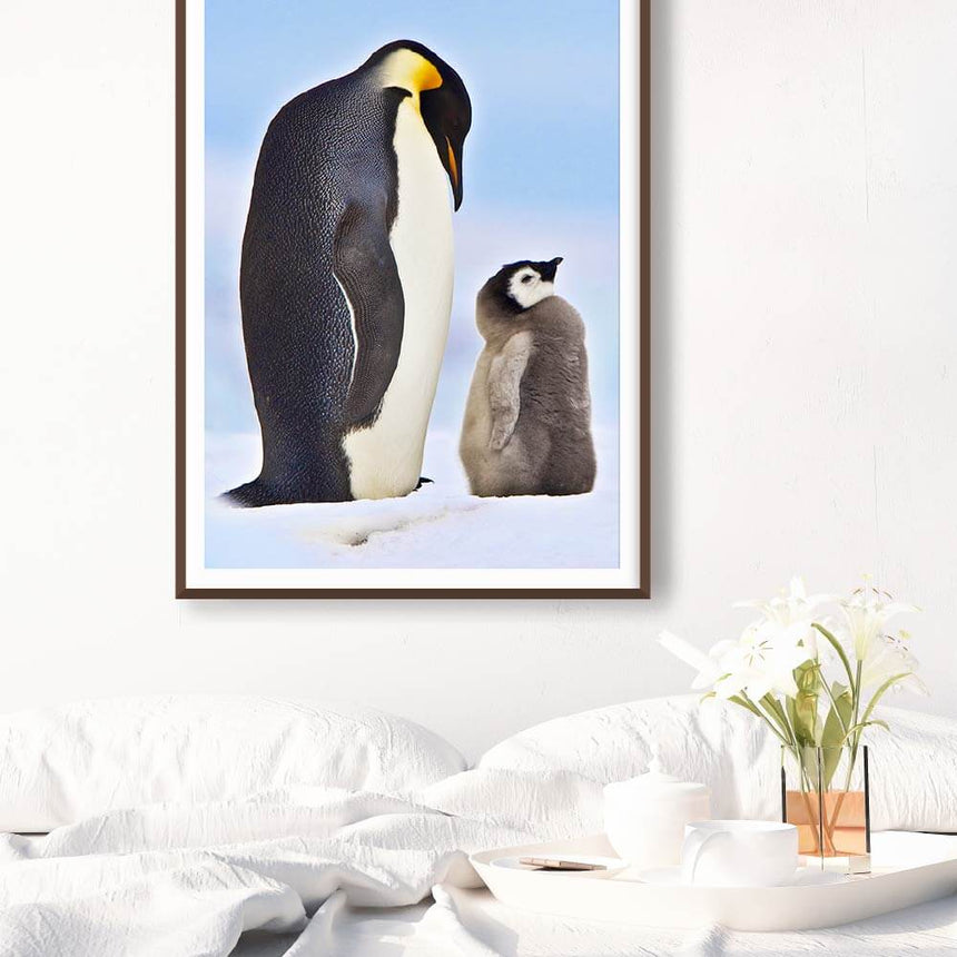 Fine art photographic print by Jonathan and Angela Scott, depicting an emperor penguin and chick in Antarctica.