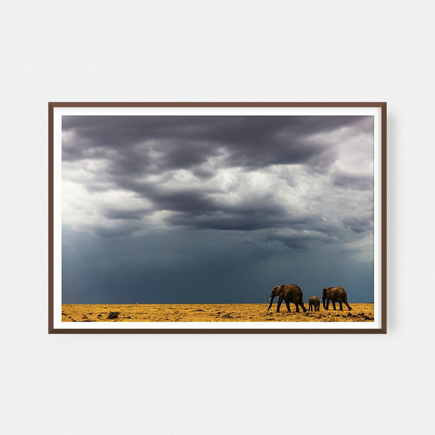 Fine art photographic print by Jonathan and Angela Scott, depicting elephants walking before the storm in Maasai Mara, Kenya.