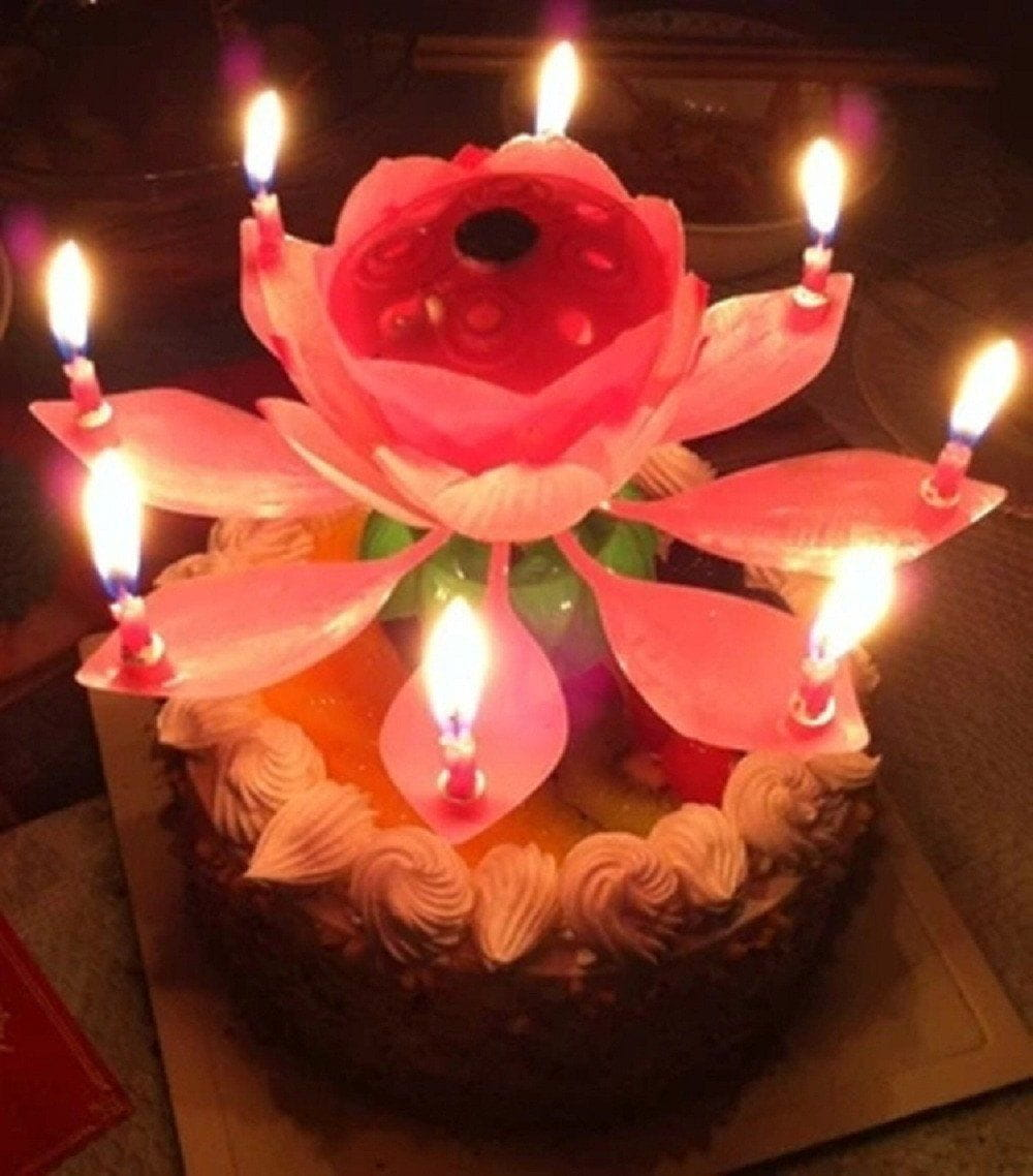 Blooming lotus birthday candles the shoppers bliss blooming lotus birthday candles izmirmasajfo