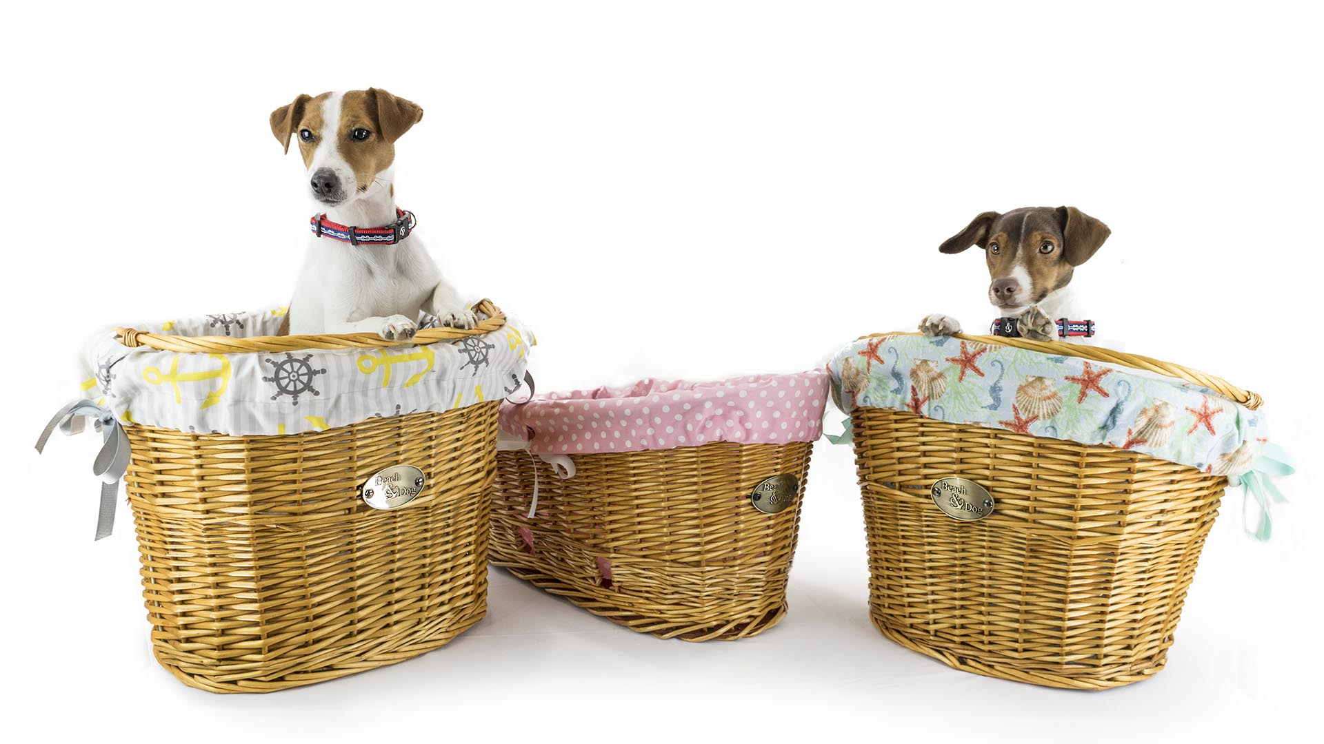 Beach & Dog Co. - Handcrafted bicycle baskets for dogs - The Largest bike baskets available