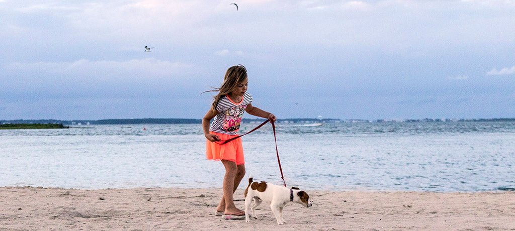 Beach & Dog Co - Hand crafted leashes and collars