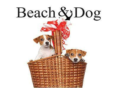Dog Tee Red Striped with Scarf - Beach & Dog Co.