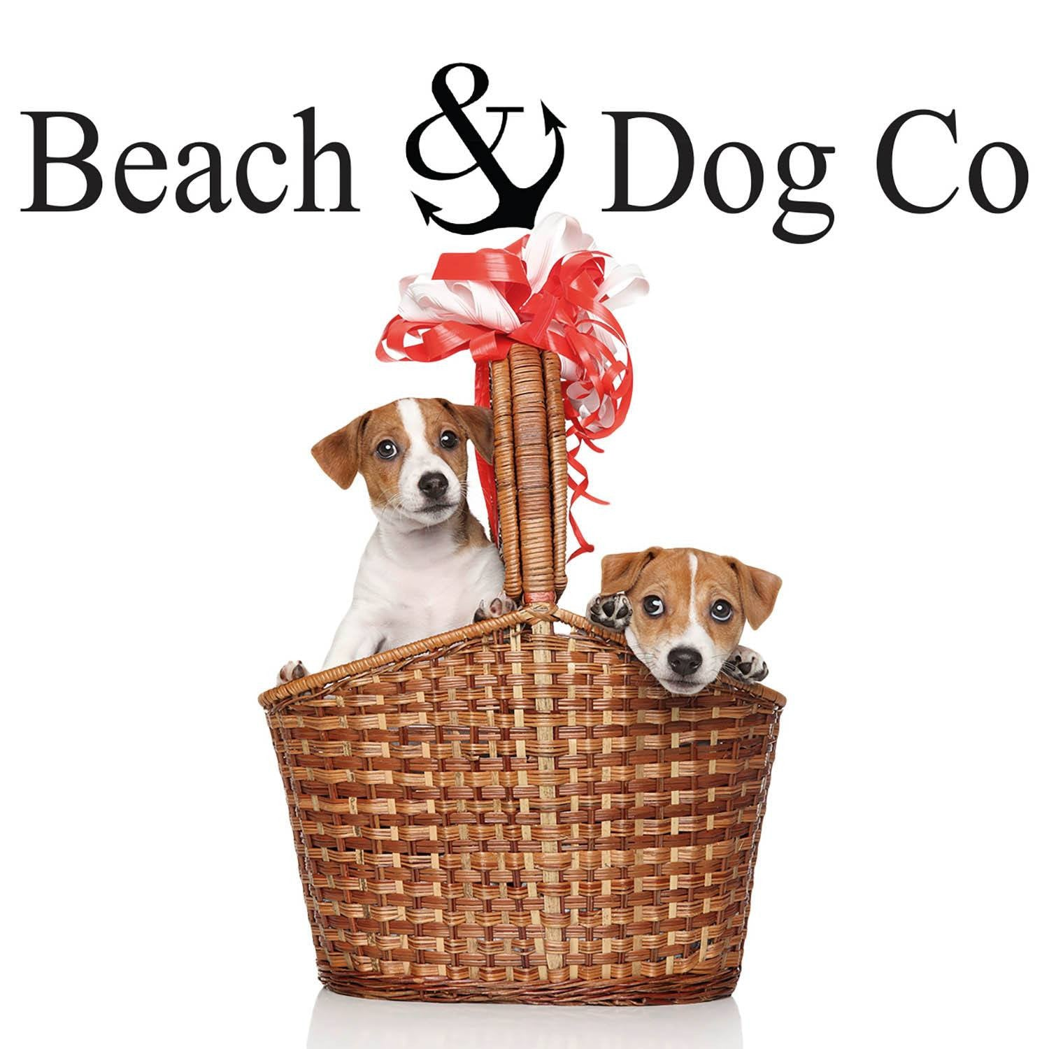 Blue Anchors on Pink Stripes Leash - Beach & Dog Co.