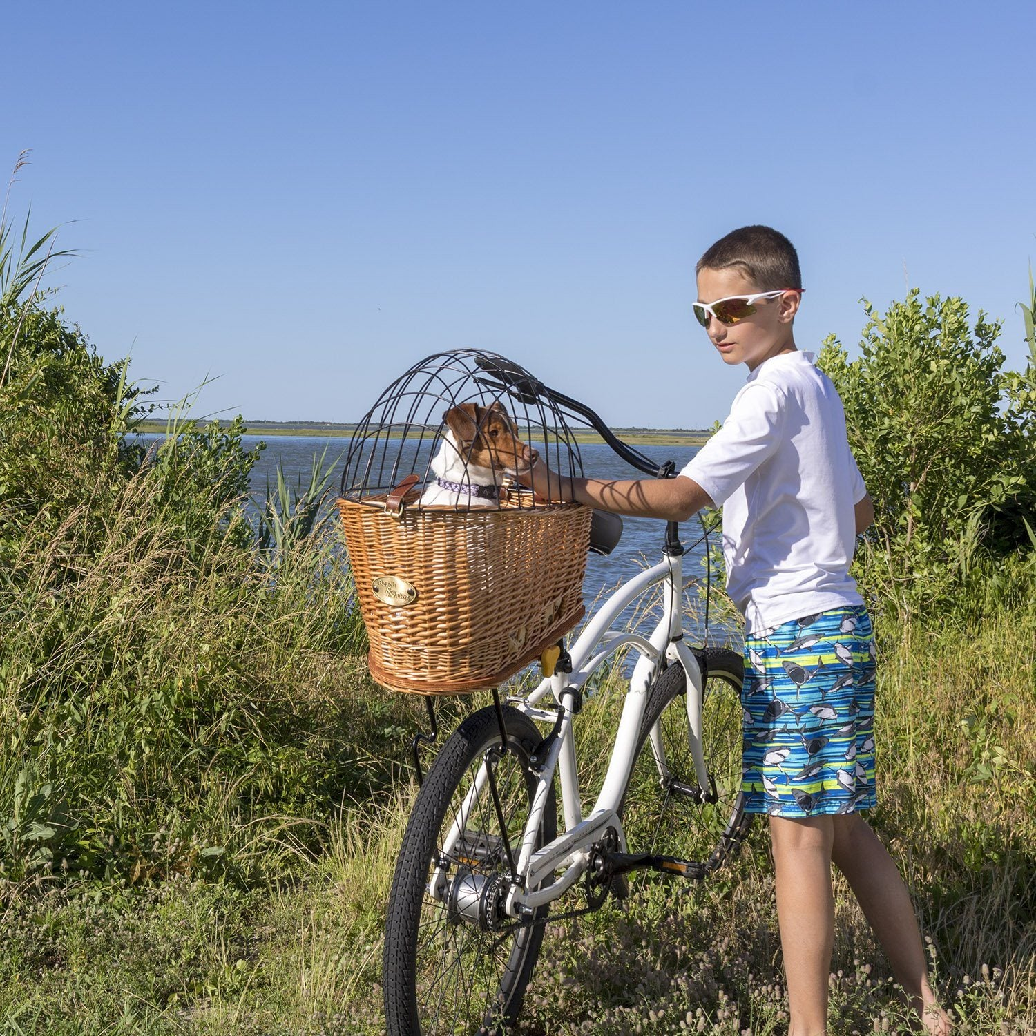 Cape May Rear Mount Bike Basket with Cage - Beach & Dog Co.