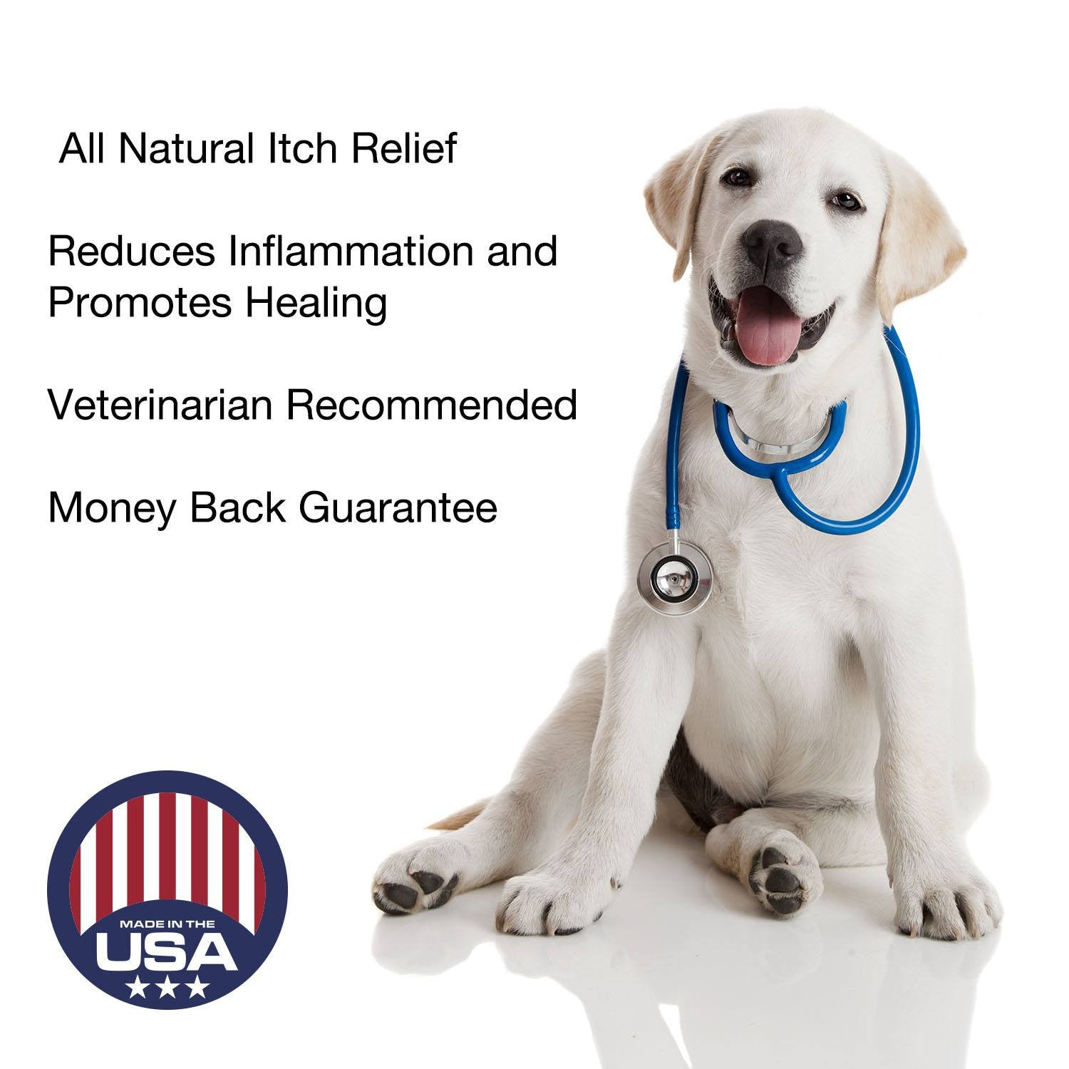 Hot Spot Relief (2 oz) Natural Itch Relief for Dogs - Beach & Dog Co.