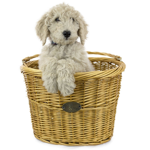 Monterey Front Mount Bike Basket - Beach & Dog Co.