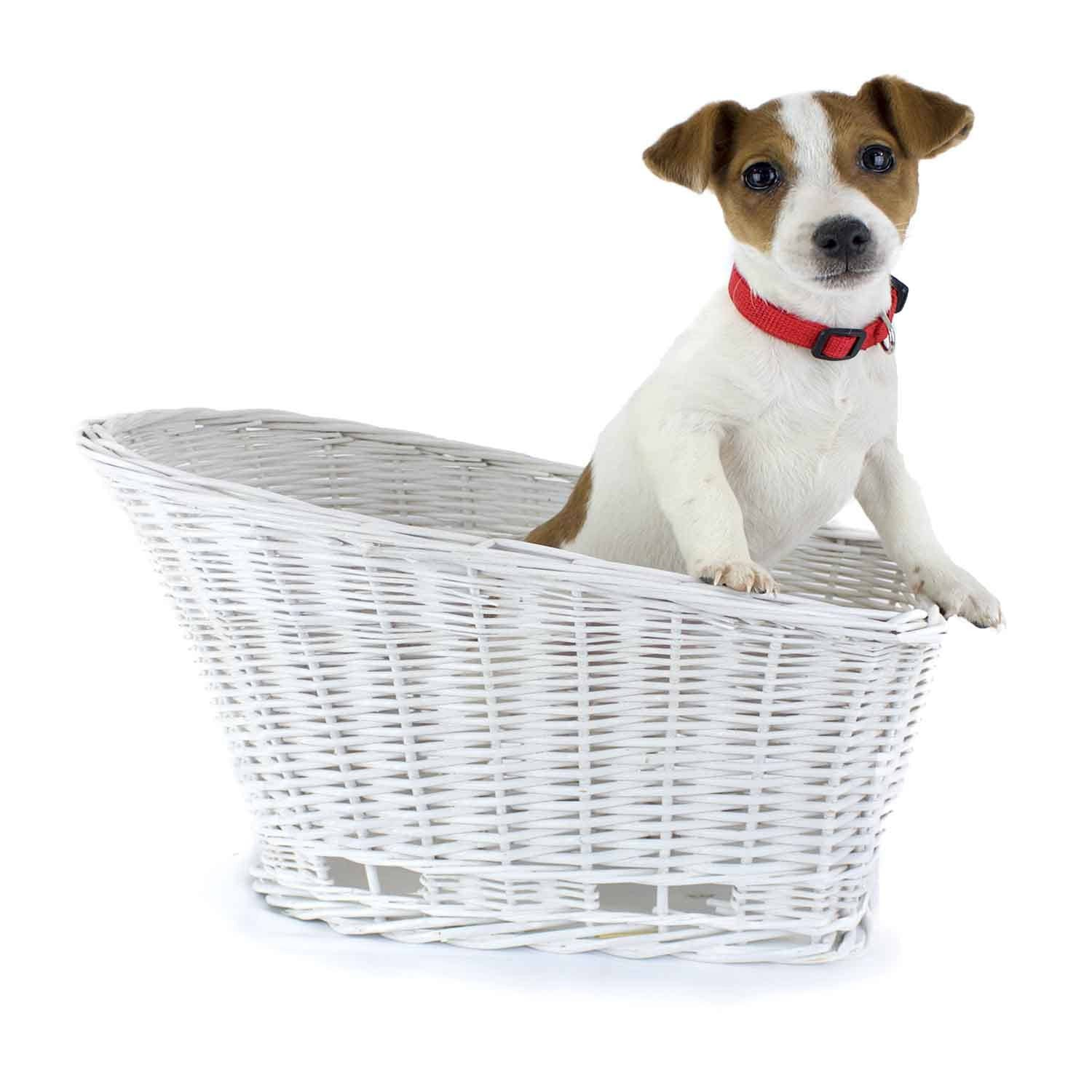 Cape May rear mount bicycle basket - hand made willow for dogs (white)