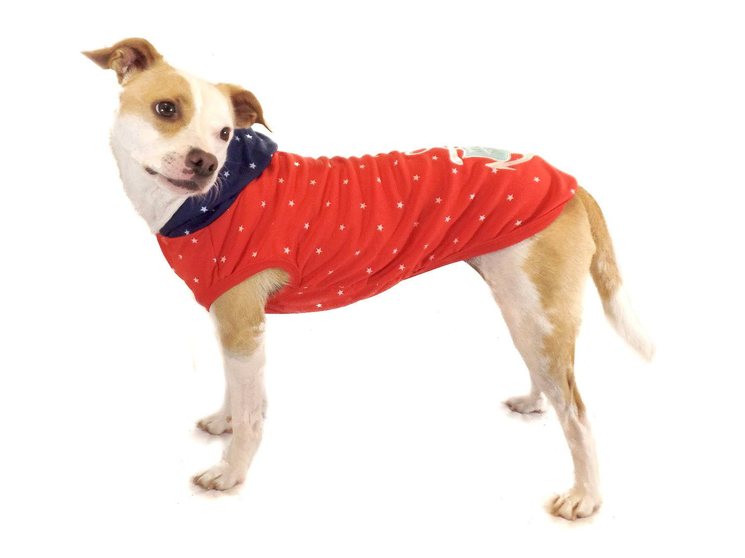 Dog Hoodie Red and Blue with Anchor - Beach & Dog Co.