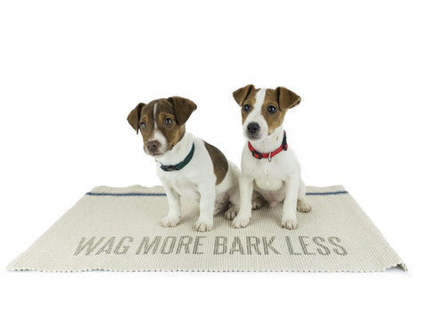 Cotton Rug - Wag More Bark Less - Beach & Dog Co.