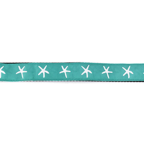 White Starfish on Aqua Collar - Beach & Dog Co.