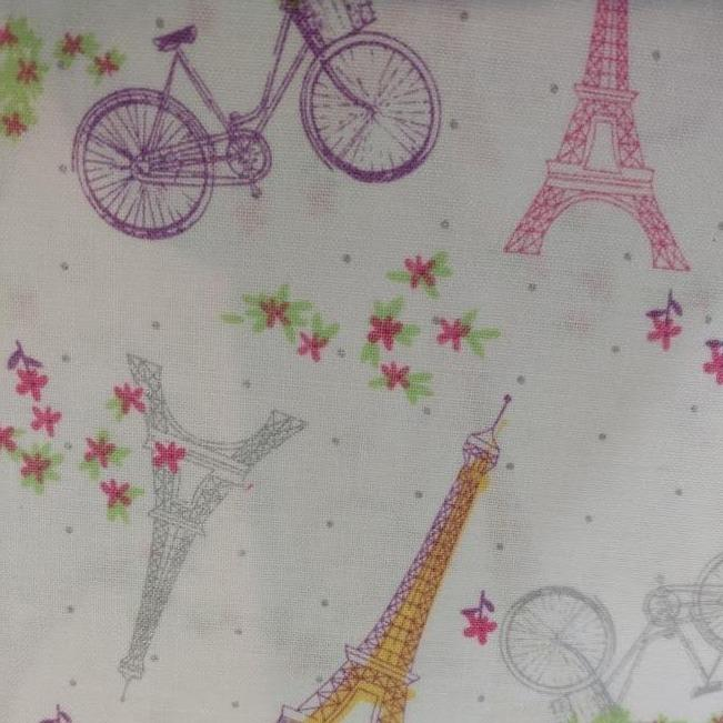 Biking in Paris Basket Liner