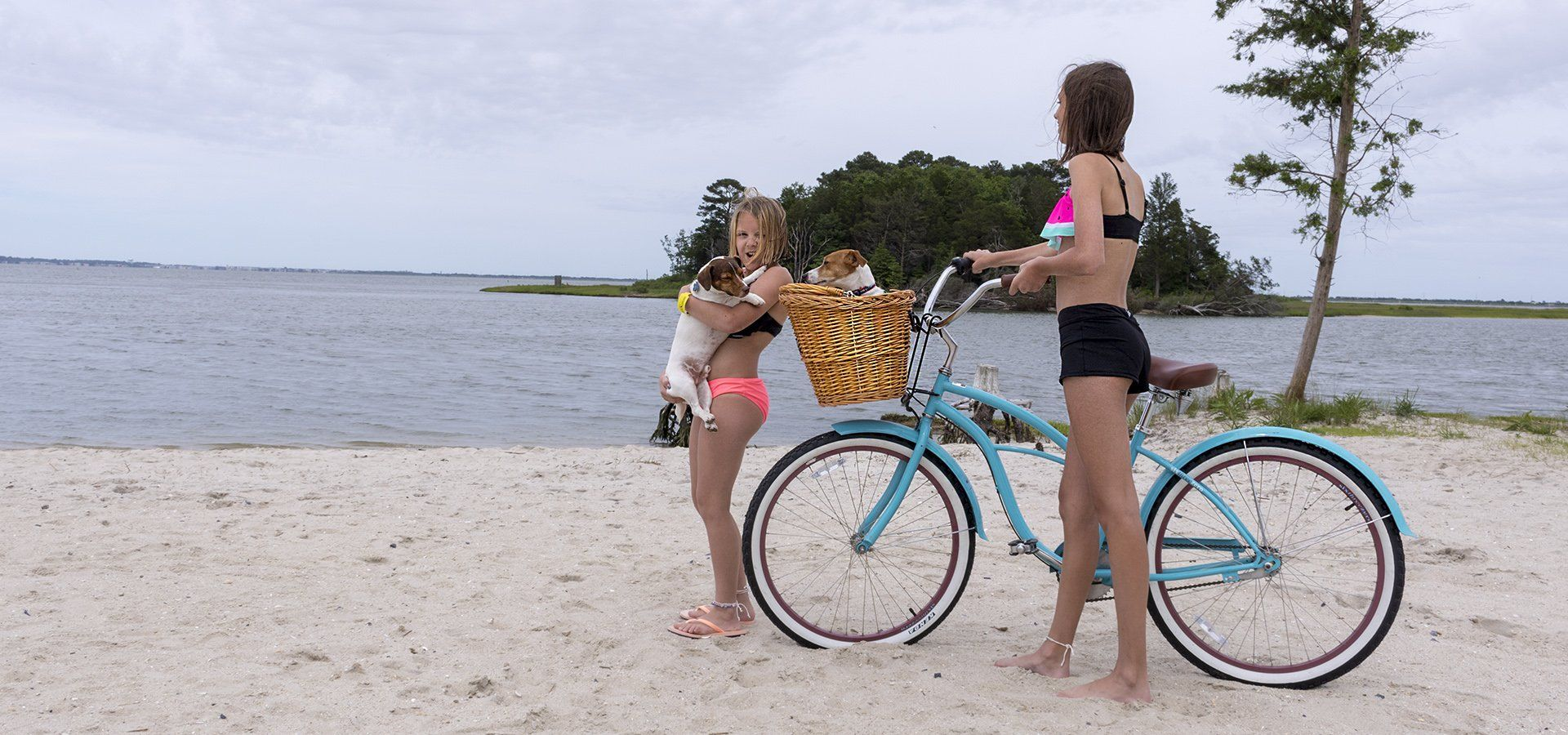 Beach and Dog Custom Bike Baskets