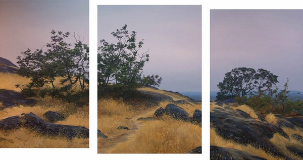 Garry Oak Meadow, Evening