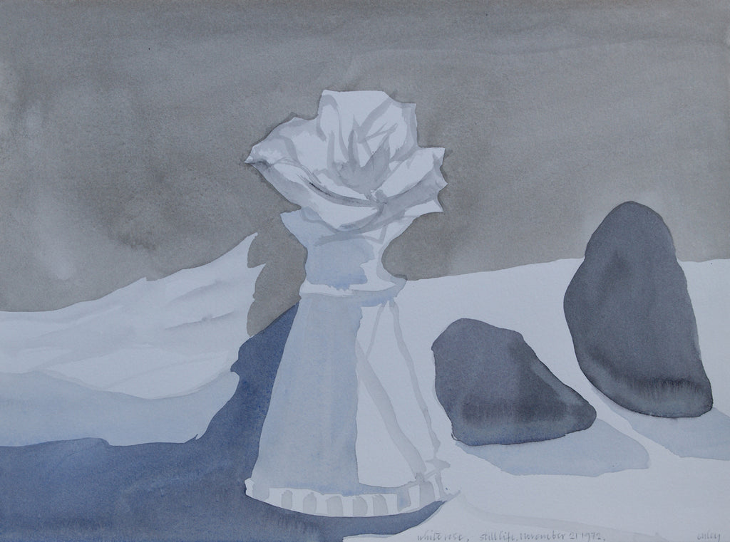 White Rose, Still Life