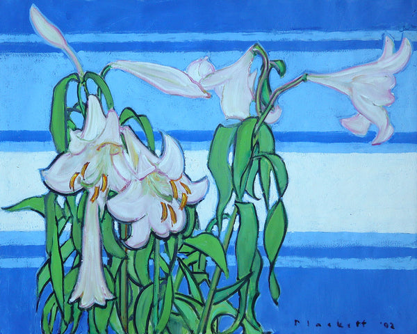 White Lily on Blue
