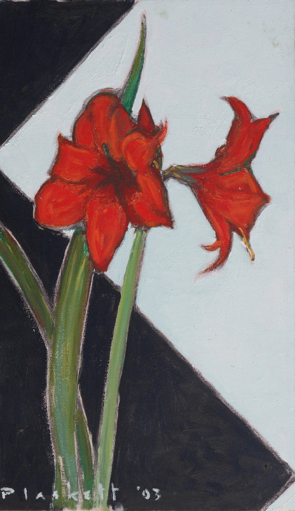 Untitled, red amaryllis