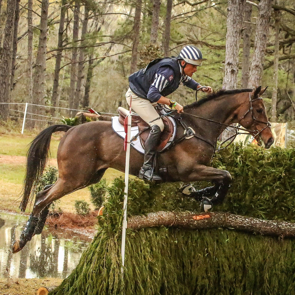 Eventing 4 Pack - (Fronts and Hinds) Boyd Martin Series - Majyk Equipe