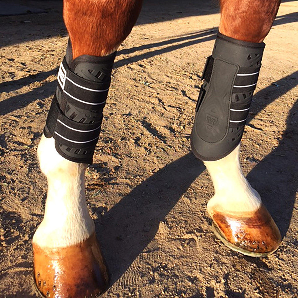 Sport Boot (Dressage) - Majyk Equipe