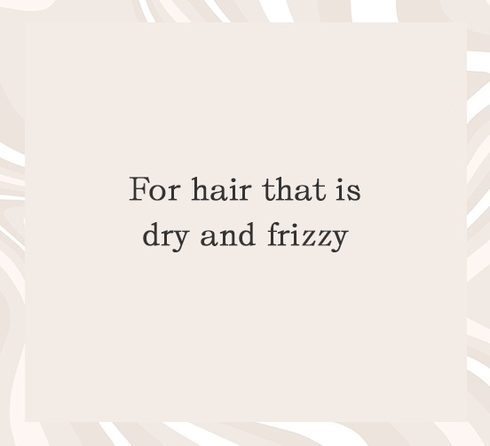 Damaged Hair that is Dry and Frizzy Collection Image