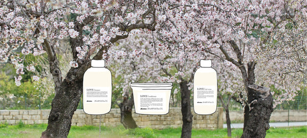 Davines LOVE Curl Enhancing Range for Wavy or Curly Hair