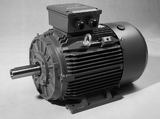Three Phase Electric Motor 110kW 2P (2980rpm) 415v B3 Foot Mounted TCI315S-2 IP55 Cast Iron - Motor Gearbox Products