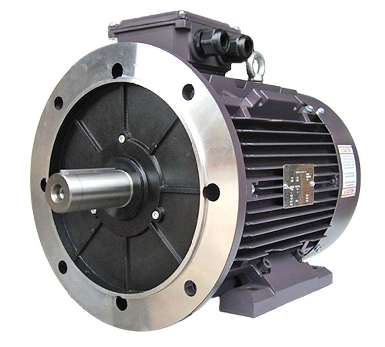 Three Phase Electric Motor 22kW 4P (1465rpm) 415v B35 Foot/Flange Mounted TCI180L-4 IP55 Cast Iron - Motor Gearbox Products