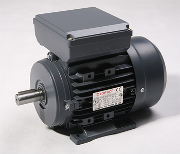 Single Phase Electric Motor 0.75kW 1HP 2Pole (2800rpm) 240v CSCR B3 Foot Mounted D80A-2 T/O IP55 - Motor Gearbox Products