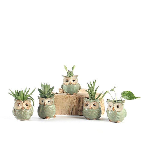 Owl-shaped Flowerpot Ceramic Creative for Fleshy Succulent Plant Home Garden Office Decoration