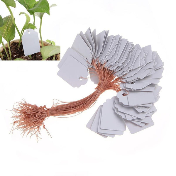 100Pcs/lot Waterproof Plastic Strip Line Plants Labels Signs Plant Hanging Tags Pot Markers for Garden Tools White