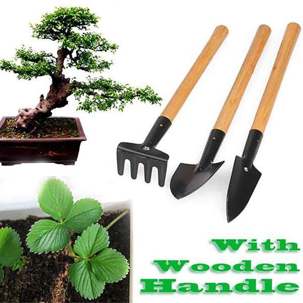 3pcs Mini Shovel Rake Garden Plant Tool Set With Wooden Handle Gardening Tools