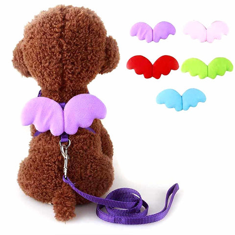 Cute Angel Pet Dog Leashes And Collars Set Puppy Leads for Small Dogs Cats Designer Wing Adjustable Harness Accessories